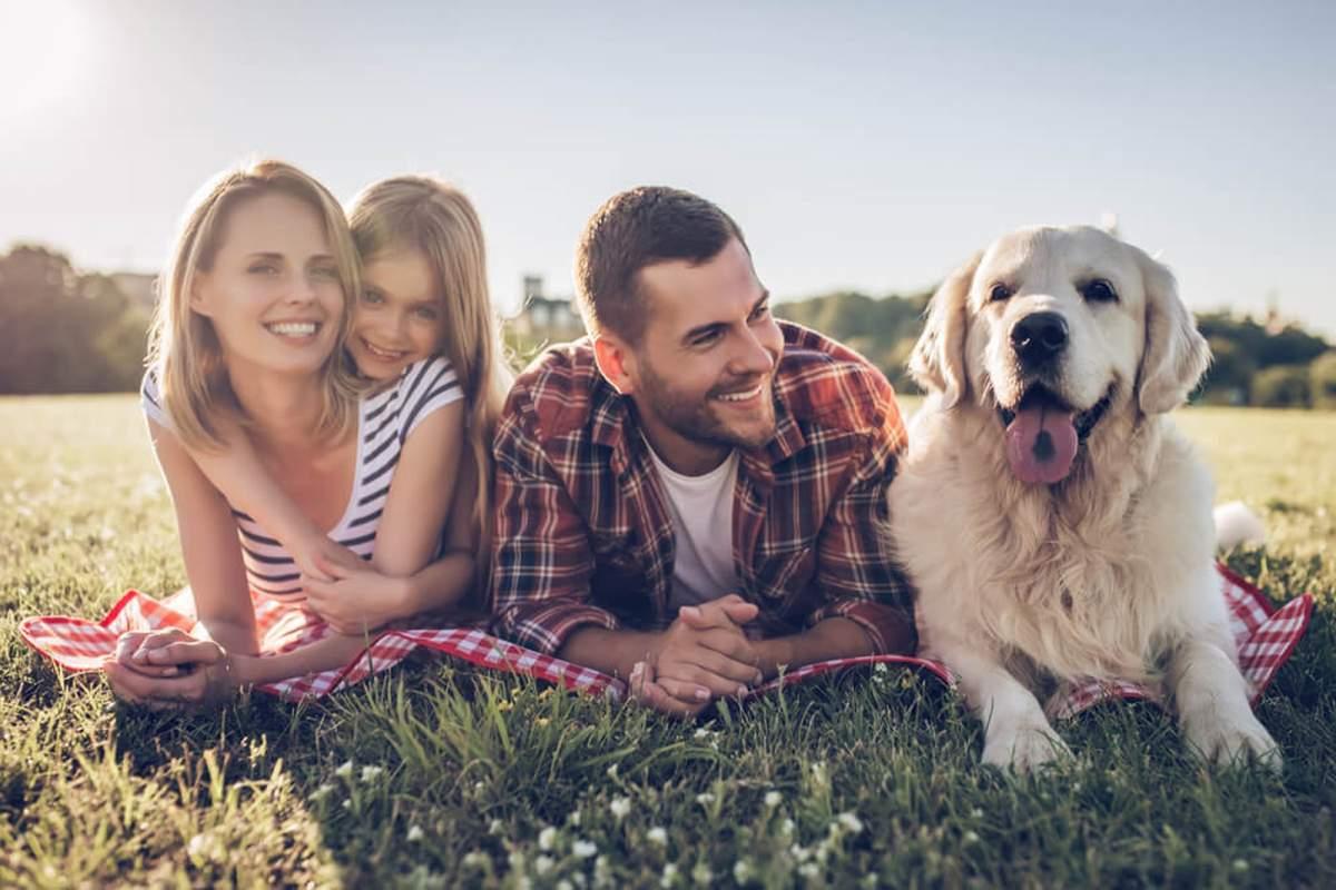 beneficios-de-tener-un-perro-como-mascota-1