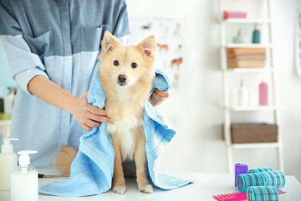 Limpia tu casa con productos de la despensa-4
