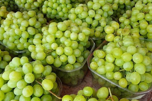 uvas-de-estados-unidos