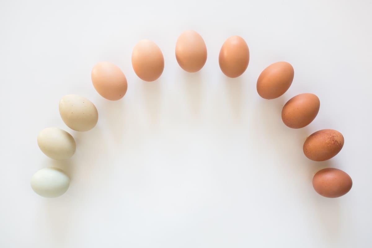 Beneficios-de-comer-huevo