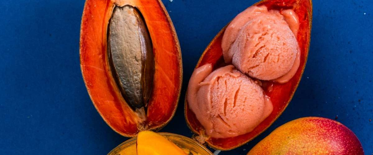 Receta de helado de mamey